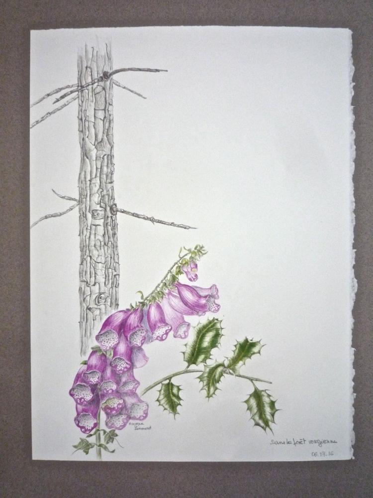 16 cours de dessin et peinture au Jardin des Plantes - Paris 5e