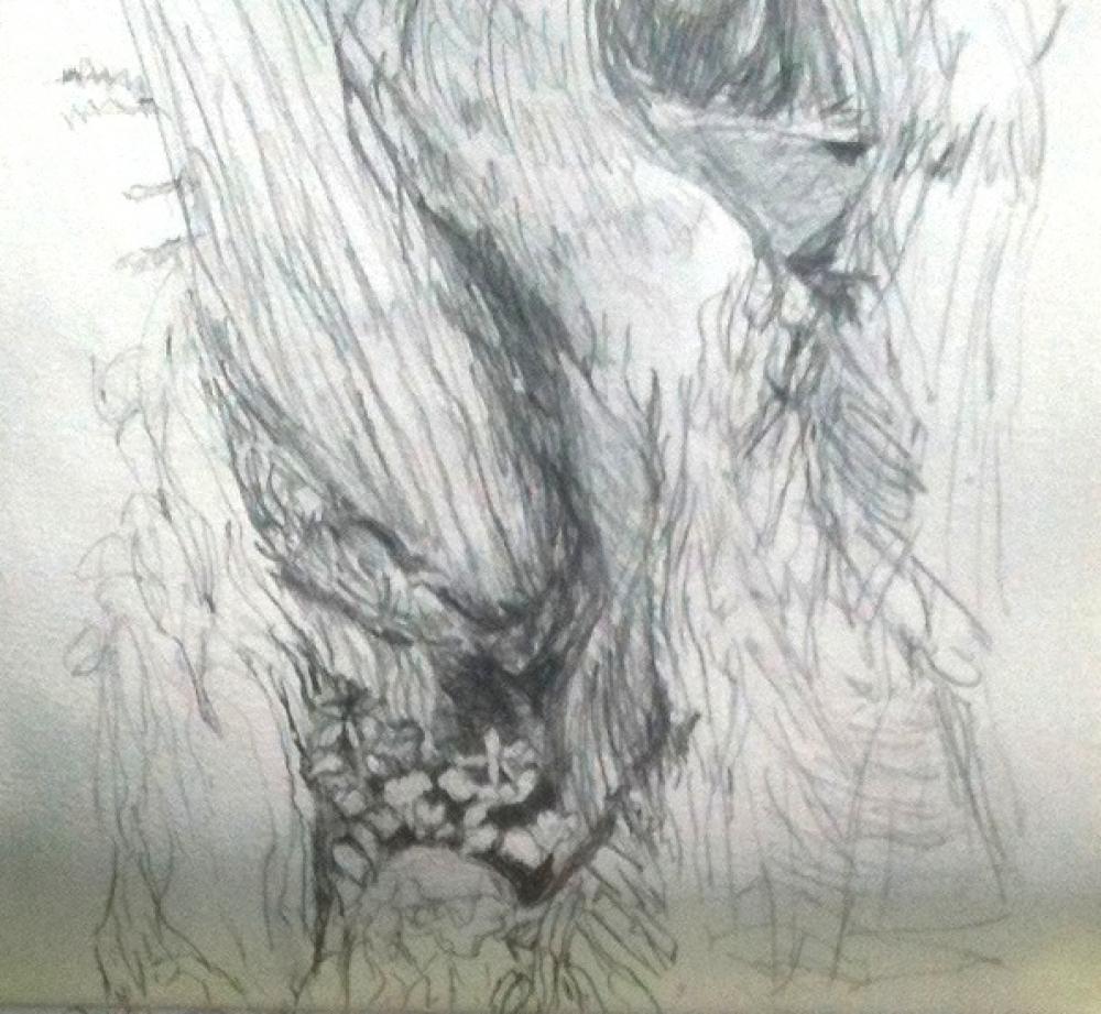 Cours d'essai de dessin et aquarelle au Jardin des Plantes - Paris 5ème