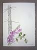 Un cours de dessin et peinture - Paris 7e