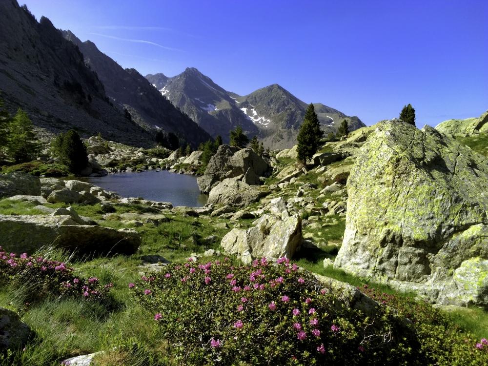 Randonnée Photographique dans le Parc du Mercantour - Nice