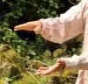 Qi Gong des six sons thérapeutiques - En ligne