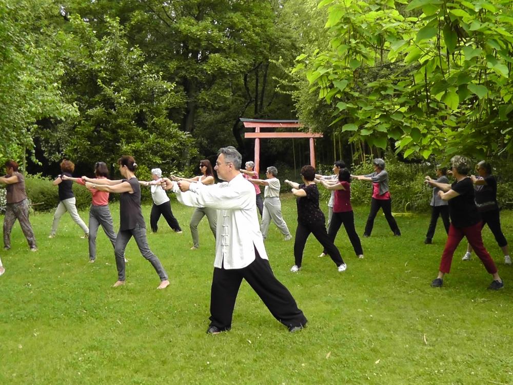 10 mois de cours collectifs de Qi Gong - Lyon Croix-Rousse