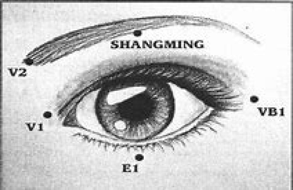 13 Séances de Qi Gong des Yeux sur Zoom - découverte pour 39 euros !! (sept/oct/nov 2020)