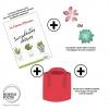 Box de jardinage : ' Sedum Big '