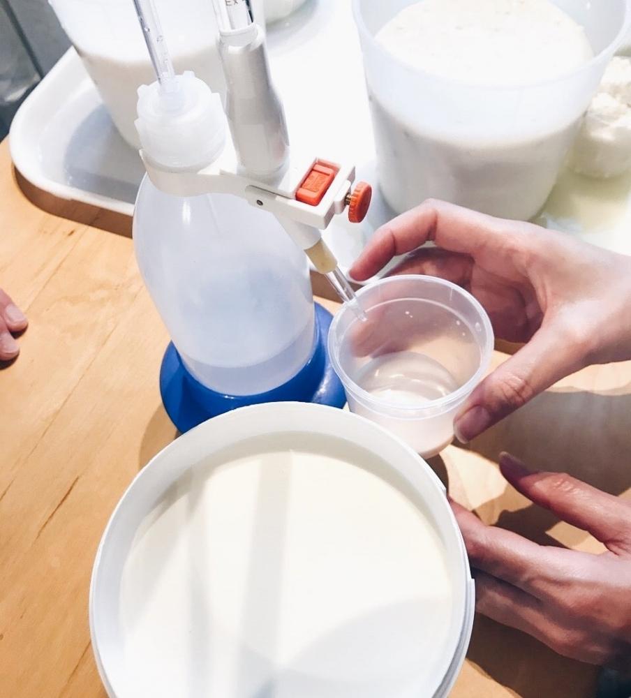 Confectionnez vos propres fromages dans le cœur de Toulouse - Tome & Ricotta