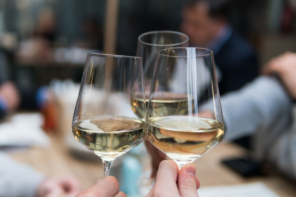 Découverte de l'œnologie : Parler du vin, connaître son élaboration