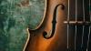 Les genres musicaux pour orchestre : le poème symphonique