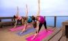 Yoga Alignements - en ligne