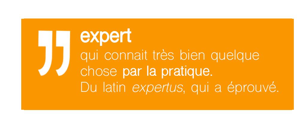 Définition expert