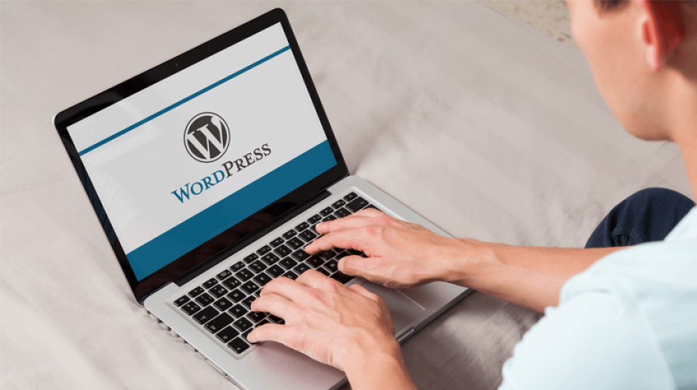 WordPress Website Creation