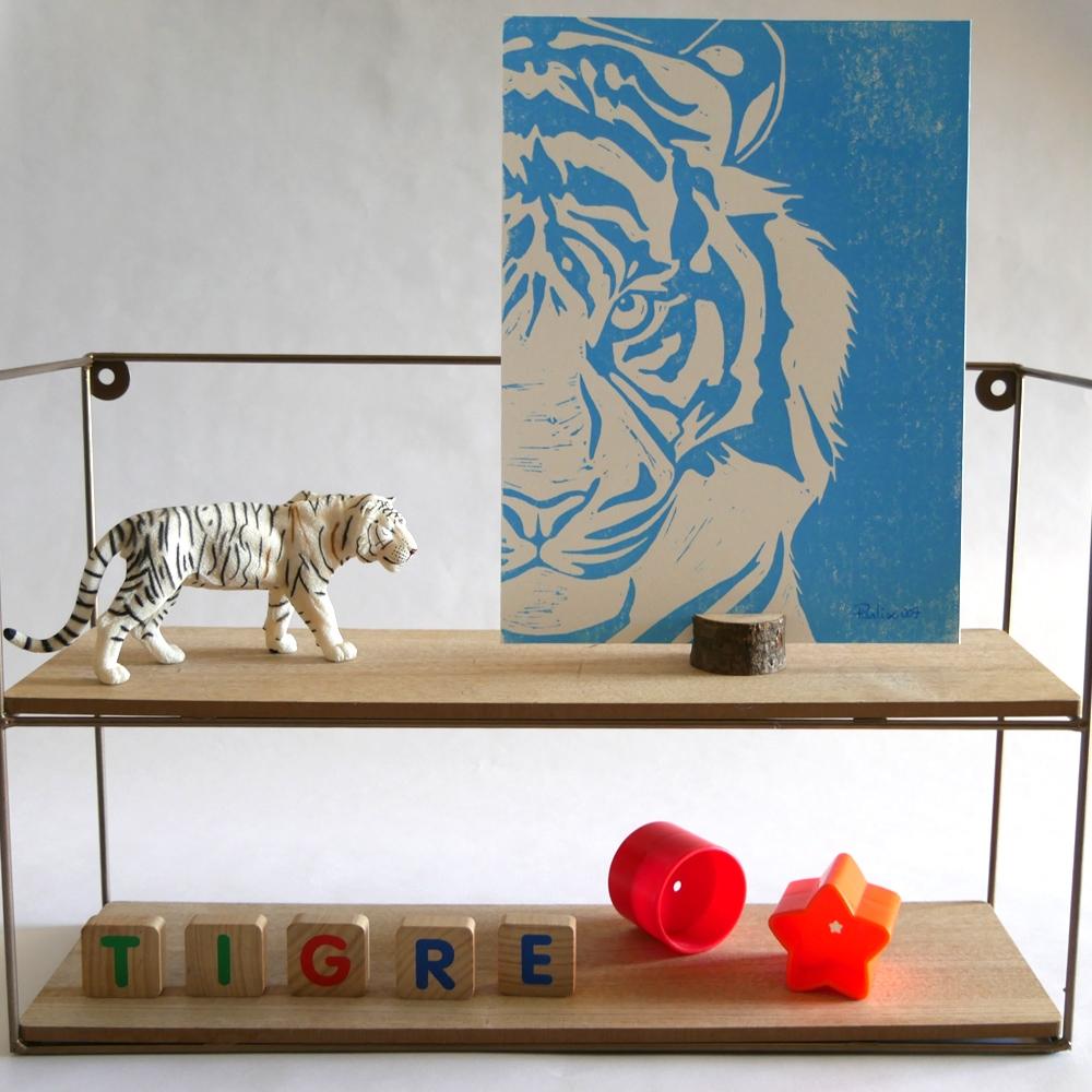 Tigre Bleu (007)