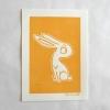 Lapin jaune (003)
