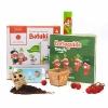 Kit Activité Semis Tomate