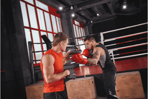 entrainement de boxe anglaise avec patte d'ours