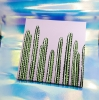 Sea of Cacti with Lavender Sky