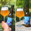 La St Bonn' Beer 6x33cl