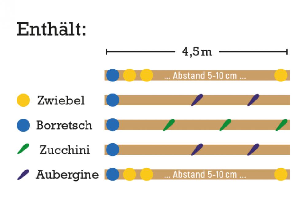 Mischkultur Mediterran - Zucchini und Aubergine
