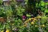 hack-museumsgARTen - Ein Garten für Alle!