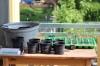 Aussaat, Pflege und Abhärten von Jungpflanzen