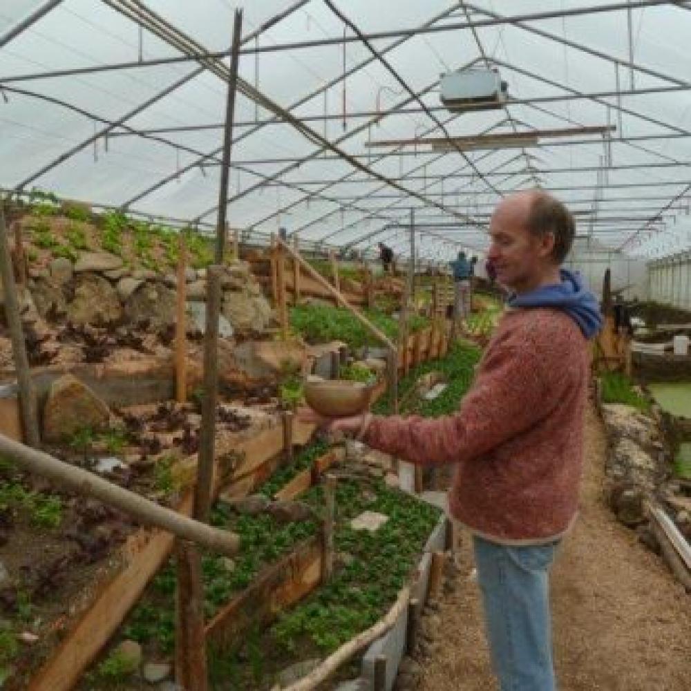 Gemeinsam zur Selbstversorgung - im Einklang mit der Natur Bio-Gemüse anbauen und ernten, ohne die Erde auszubeuten.