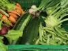 Gemüsefarm am Lohberg Gemüsekisten Bestellungen