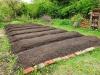 Zurück zu den Wurzeln - Biointensiven Gemüseanbau praktisch erkunden