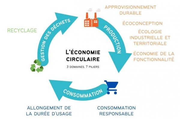 economie circulaire bidull