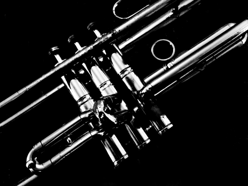 Trompette en noir et blanc