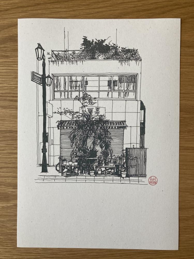 Tokyo Potted Garden #2