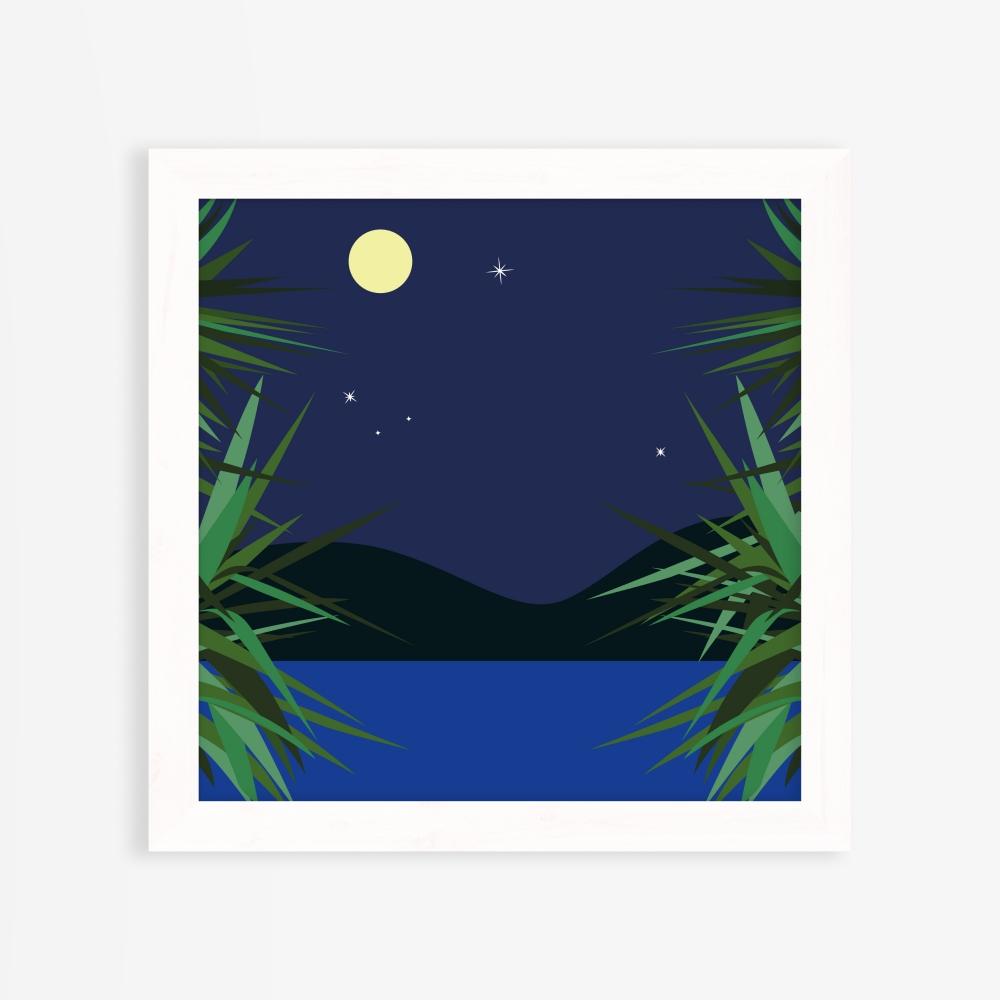 Nuit de pleine lune en été