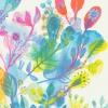 Let Your Heart See the Colors - Série limitée - Risographie