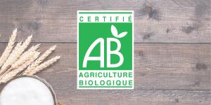Présentation de la bière bio et des bières biologiques