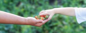 Les jouets, un moyen d'apprendre à partager pour les enfants