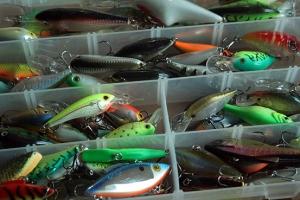 Bien pêcher aux leurres avec peu de matériel