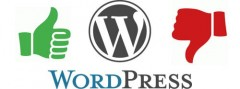 wordpress pros and cons marketplace