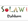 SoLaWi-Dahlum